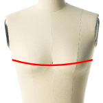 bust measurements for a dress form