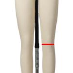 knee measurements for a dress form