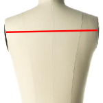 back width measurements for a dress form